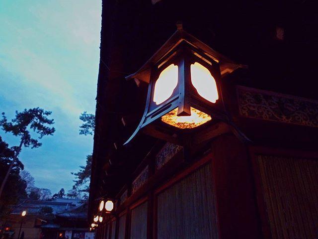 """Kepadanya, yang merupakan cahaya, mereka persembahkan cahaya. . . . #onthisday #japan #kansai #kyoto #winter #yasaka #shrine #yasakashrine #lights #lanterns #lentera #travel #travelgram #traveling #instatravel #travelphotography #solotravel #solotrip #関西 #京都 #神社 #八坂神社 #灯籠 #夜 #旅行 #旅人"" by (_kariima). 夜 #京都 #kyoto #神社 #onthisday #winter #solotrip #japan #旅行 #八坂神社 #yasakashrine #solotravel #旅人 #lentera #灯籠 #lights #traveling #lanterns #kansai #travelphotography #関西 #travelgram #travel…"