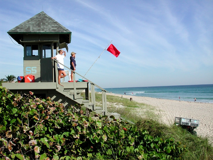 Liaurds Gaurding The Beaches