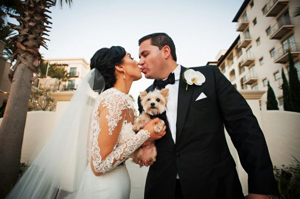 The newly weds and their dog! Photo by: Limelight Photography
