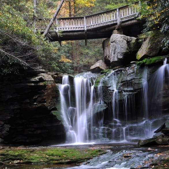 Elkaka Falls in Blackwater Falls Park