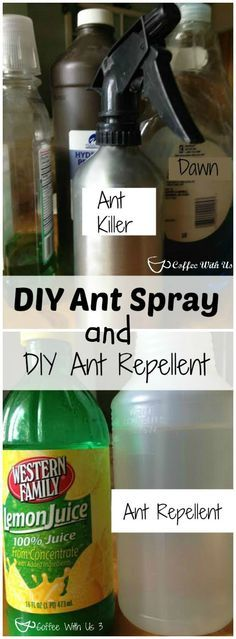 DIY Ant spray & Ant Repellent using common household items.  Get rid of those ants and keep them away!!