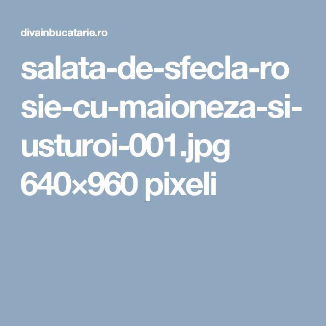 salata-de-sfecla-rosie-cu-maioneza-si-usturoi-001.jpg 640×960 pixeli