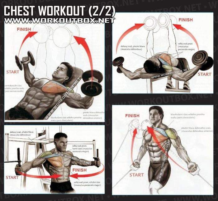 center chest workout