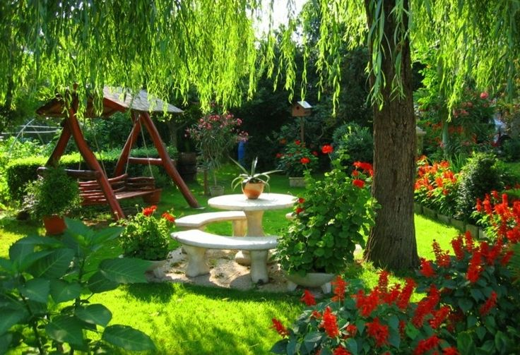 flores bonitas rojas jardin banco columpio mesa ideas