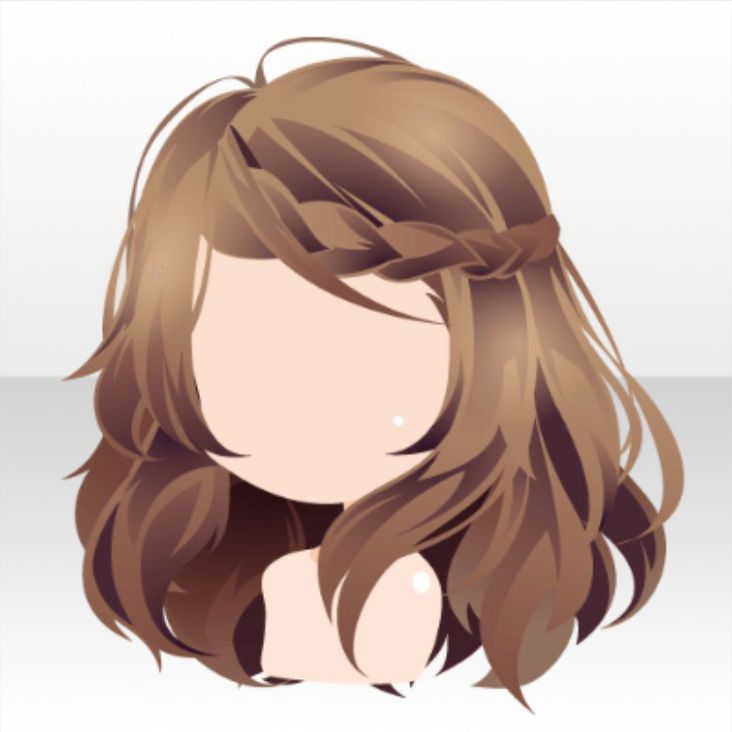 Hairstyle Mail Clerk Clerk Braided Hair Ver A Brown Jpg Chibi Hair How To Draw Hair Manga Hair