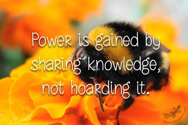 Power is gained by sharing knowledge, not hoarding it.  #power #gained #sharing #knowledge #hoarding  ©The Gecko Said - Beautiful Quotes