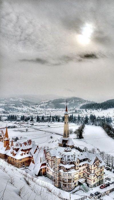 """Mănăstirea """"Acoperământul Maicii Domnului"""" şi Baza de Odihnă şi Tratament recuperator """"Procopie şi Elisabeta"""" din comuna Dorna Arini, judeţul Suceava, la 5 km de municipiulul Vatra Dornei"""
