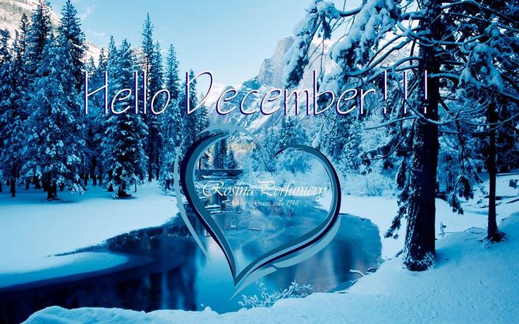 @rosinaperfumery Hello December!! You're the last one so be the best one!