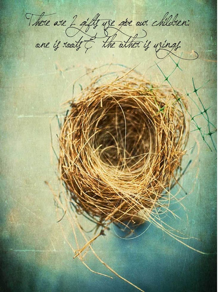 """empty nest Here are some dos and don'ts from dr andrew on how to survive """"empty-nest  syndrome"""" — whether or not you still have other children at home."""