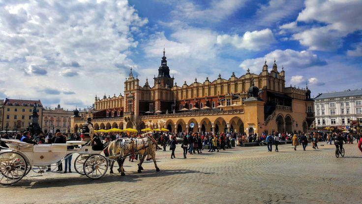 #krakow #poland #oldtown #horse