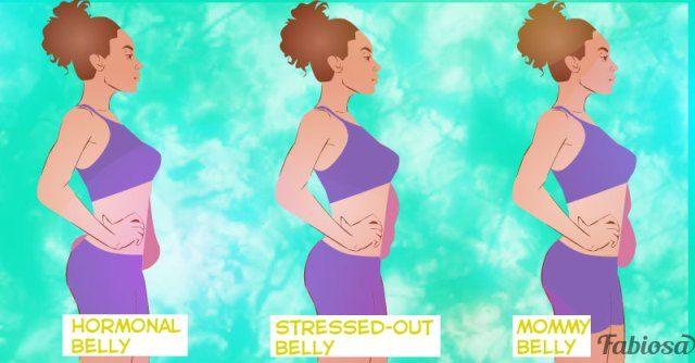 pierde belly fat lean