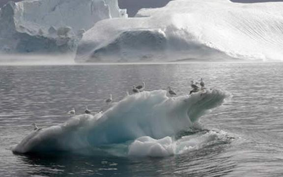 Vídeo: Naturaleza| Ecosistema: El deshielo del Ártico libera la emisión de CO2 vía @cerestv