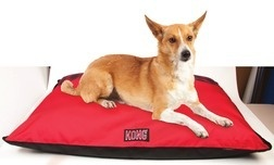 "Kong® Chew Resistant Dog Bed, 35"" x 46"">"