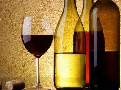 Dégustation de vin à Budapest et visite de la ville - 65 EUR