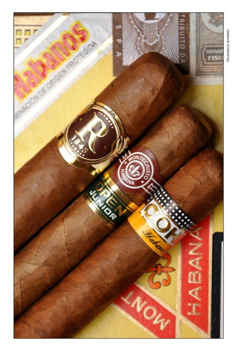 125 best images about cigar bands on pinterest ybor city for Tattoo shops in ybor