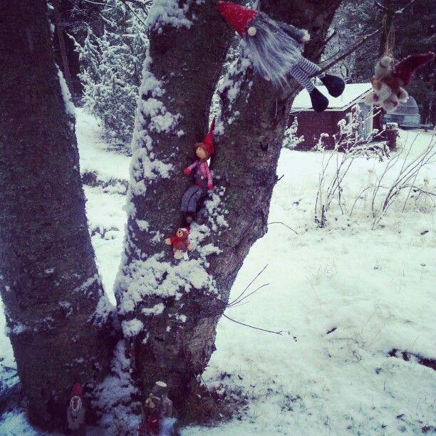 An elf-tree.