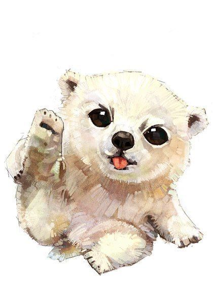 #bear #white #whitebear #cute #little #picture #мило #мишка #медведь #медвежонок #белыймедведь #малыш