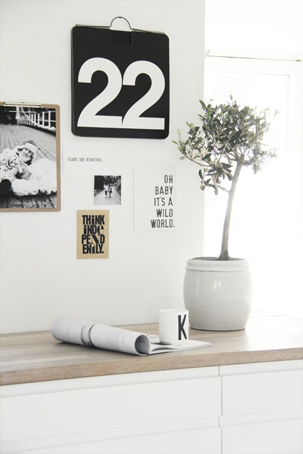 Little olive tree and black and white decor