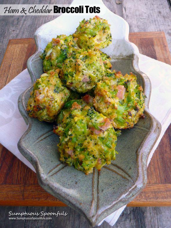recipe: broccoli appetizer recipes [25]