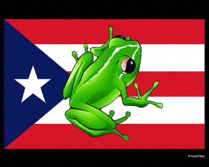 Puerto Rico Flag Designs | coqui with puerto rican flag t shirt design 130148768991 about this ...