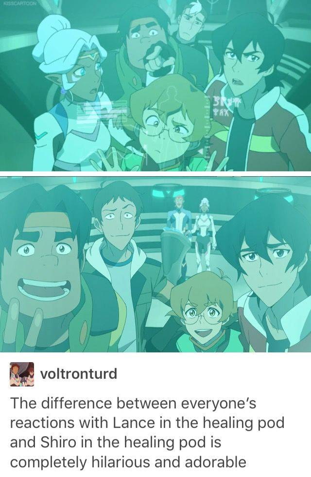 WHO GAVE PIDGE THE RIGHT TO BE SO DAMN CUTE