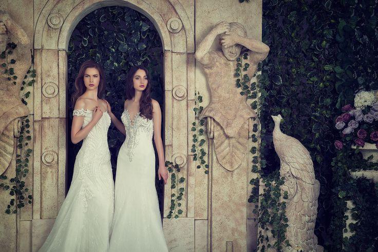 13 besten Angelo Estera. Bridal collection 2016 Bilder auf Pinterest ...