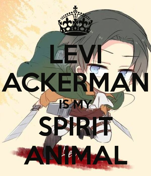 Image result for levi ackerman wallpaper iphone