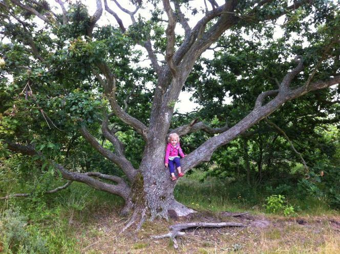 Ervaringen en speeltips van OERRR | Natuurmonumenten