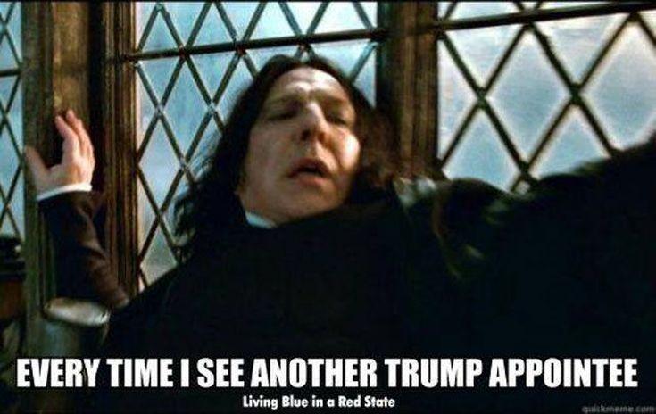 Funniest Trump Transition Memes: Trump Appointees