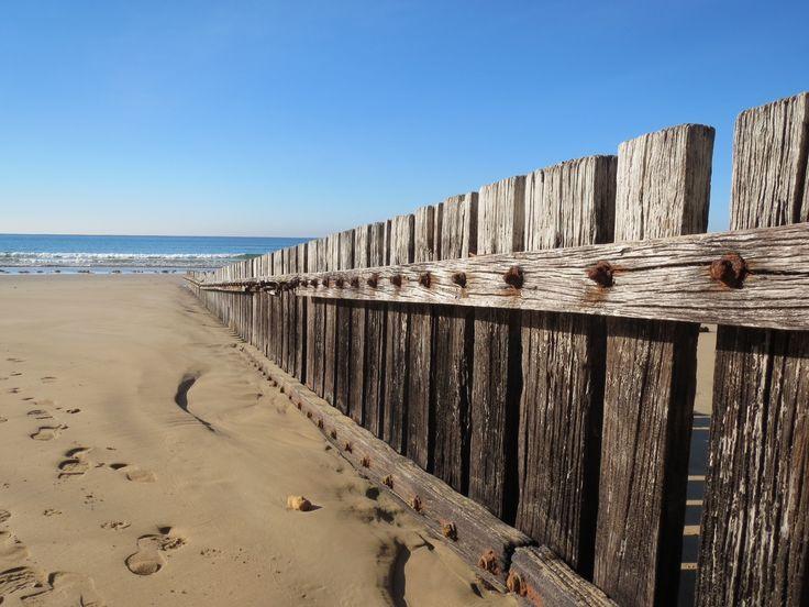 Cosy Corner Beach, Torquay, Victoria, Australia