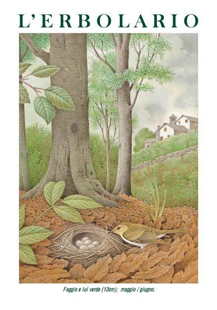 Calendario 2003: flora e fauna degli splendidi paesaggi italiani, tra montagne, boschi e risaie, culla dei cosmetici de L'Erbolario