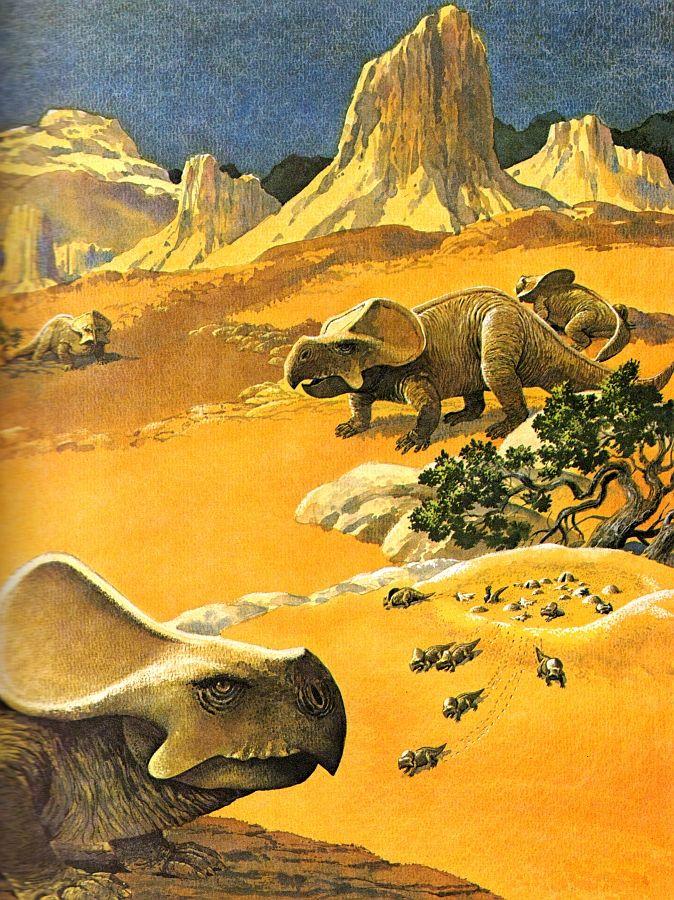 Protoceratops.