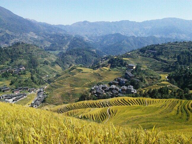 Terraced fields in Longji, China.