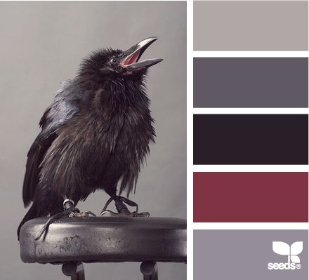 Raven Tones: Battleship Gray, Midnight Grey, Black, Cranberry Red and Faded Grey