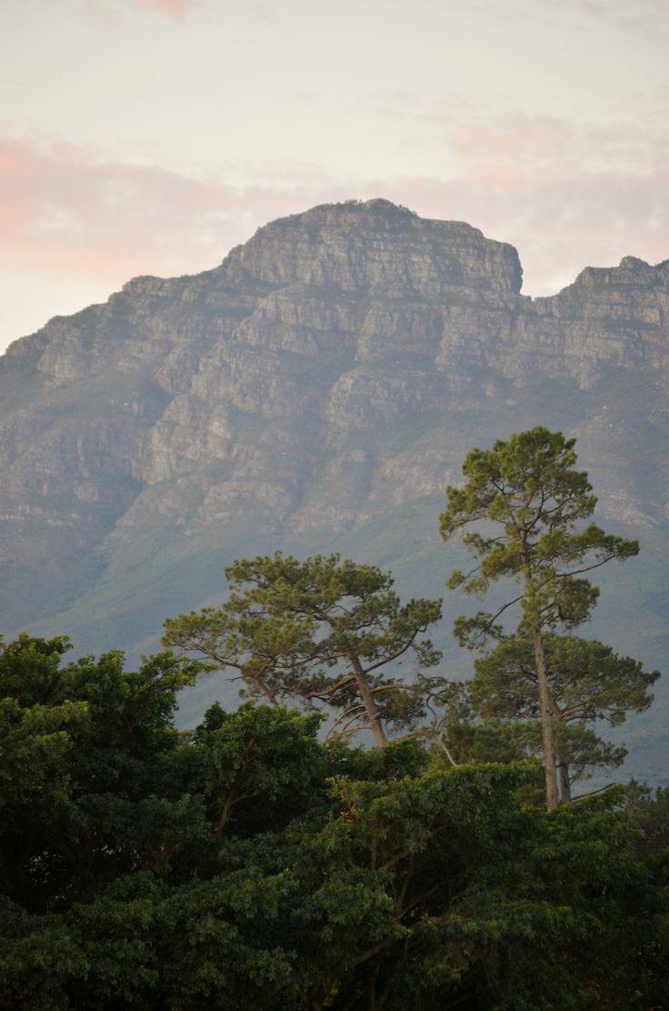 Afrikaans Tutors near Stellenbosch on SkillUp