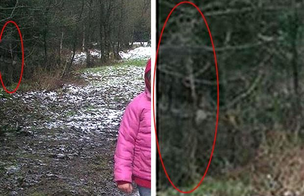 Taken whilst John Wilson was out walking with his children and dog, the image contains a strange figure in the trees. Some say the figure is simply a mixture of shadows, leaves and branches...