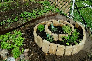 Planting My Life: Herb Spiral and Patio Garden