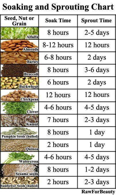 Soaking and sprouting chart - Sprouting seeds do not take up much space in storage for the amount of nutrition you're getting.