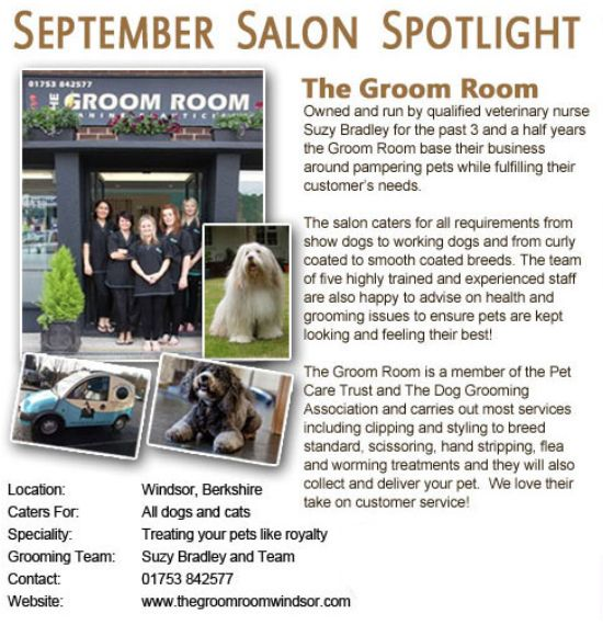 Salon Spotlight September 2011, The Groom Room