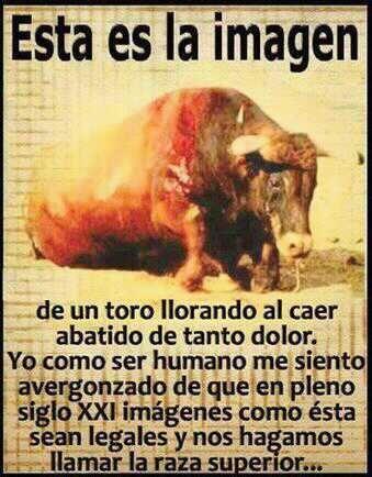 NO a las corridas de toros. NO al maltrato animal -- PLEASE SIGN : http://forcechange.com/33843/stop-setting-live-bulls-on-fire-in-spain/