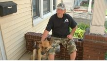 A Subway restaurant in New Jersey expels vet with service dog....but worries about halal food in Europe-go figure.