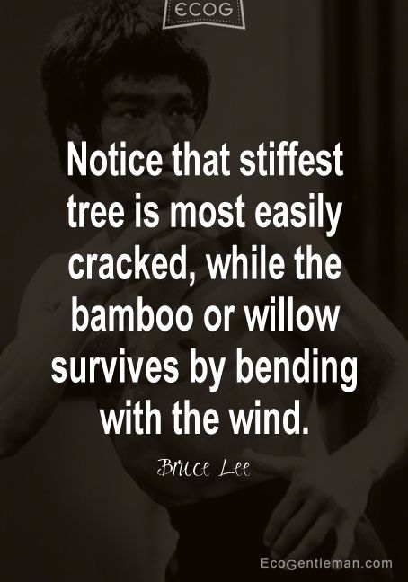 "Martial Arts Quotes by Bruce Lee ♂ ""Notice that stiffest tree is most easily cracked, while the bamboo or willow survives by bending with the wind."" #ecogentleman"