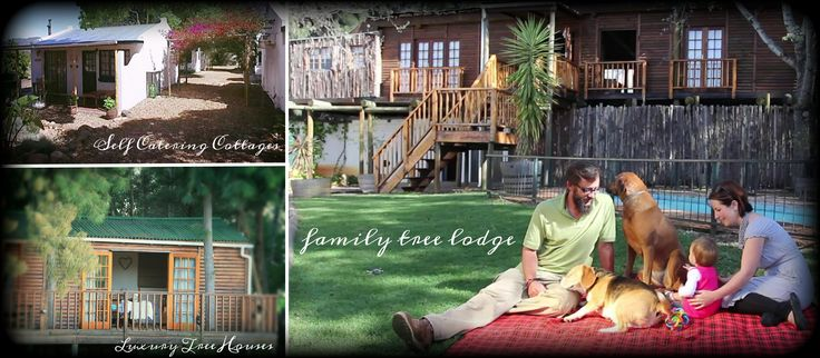 Vindoux Guest Farm | Vindoux Guest Farm and Luxury Tree House Accommodation