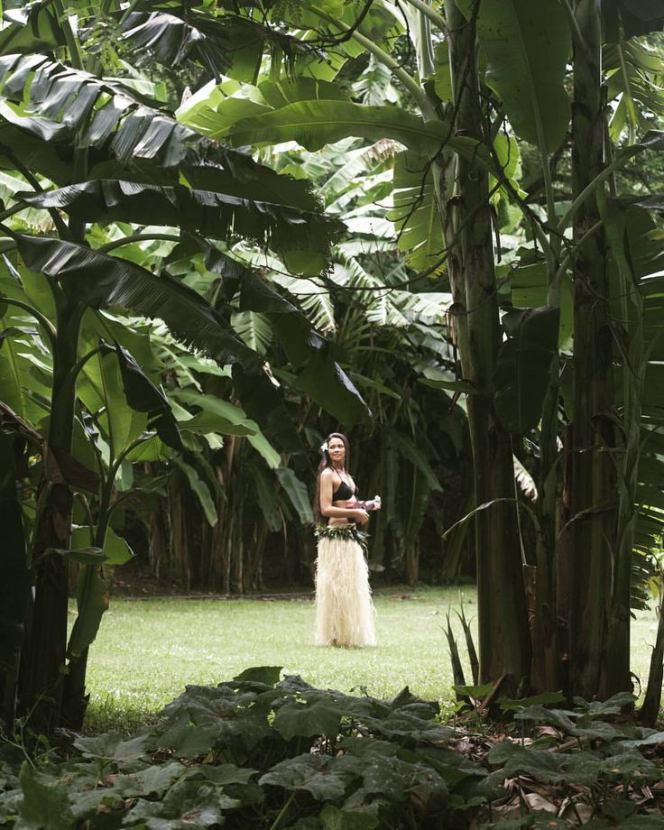Erotic stories in tahiti