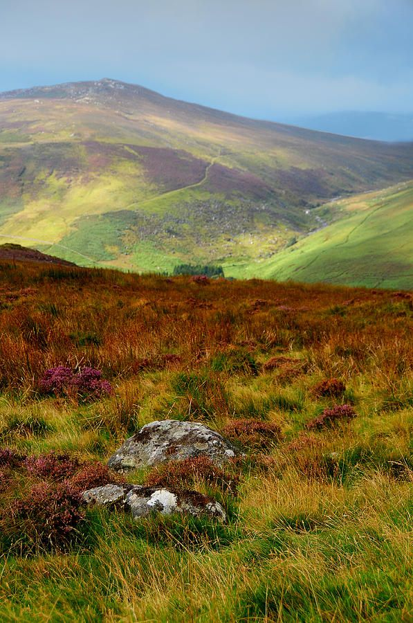 Multicolored Hills Of Wicklow. Ireland by Jenny Rainbow.  , This  artwork available as framed, metal, acrylic prints, in art products for home decor and greeting cards  #JennyRainbowFineArtPhotography  #Ireland #Wicklow #Hills #FineArtLandscape #Autumn