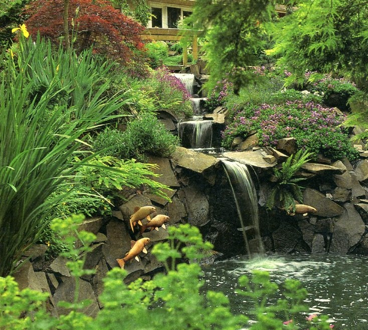 211 best images about pond ideas on pinterest gardens for Pond shade ideas
