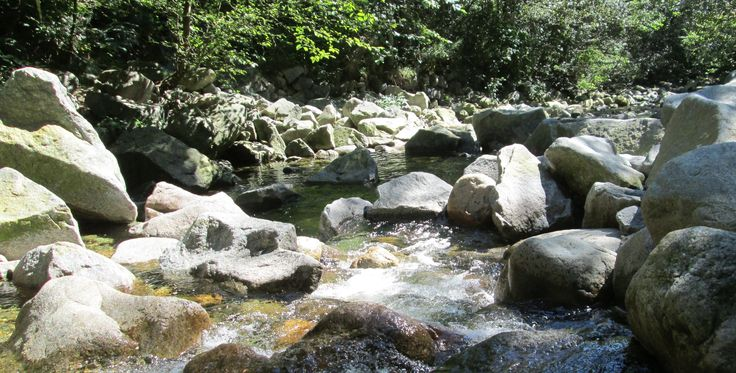 Mosquito Creek, North Vancouver, BC (July 27, 2014)