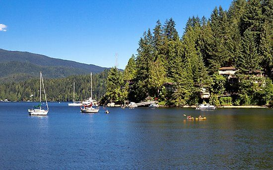 Vancouver – Canada. The village on the slope of Deep Cove in North Vancouver  British Columbia, bay,  coastline   and  forest, Marina yachts and kayaking • Also buy this artwork on wall prints, apparel, stickers, and more.