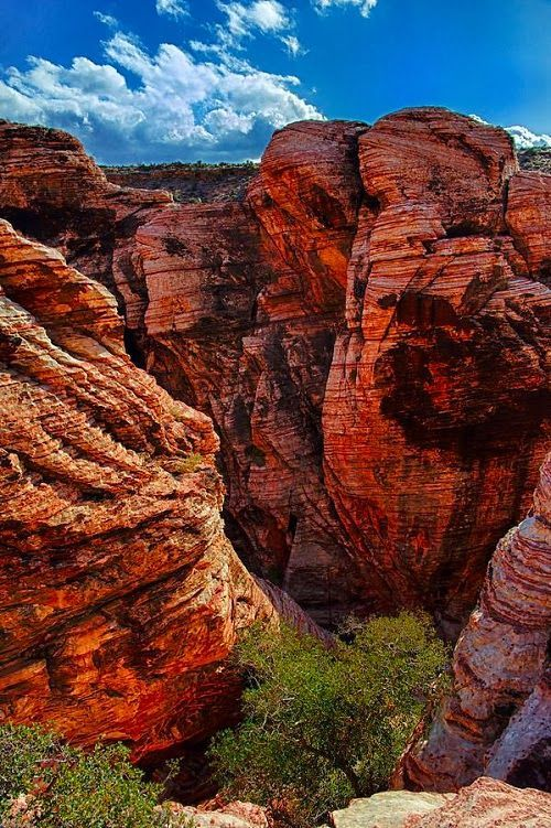 The Red Rock Canyon, Las Vegas