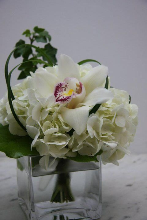 Simple arrangement of white cymbidium orchid bloom one a bed of white hydrangea with ivy, and lily grass